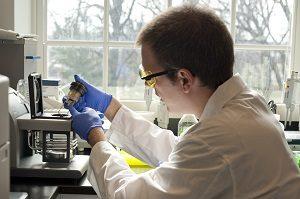 preparing_scientific_equipment_9955310416