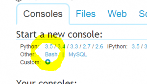 On the consoles tab, click 'Bash' to create a bash shell'