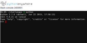python interpreter screen