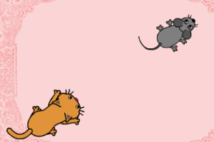 Cat vs Mouse Tutorial